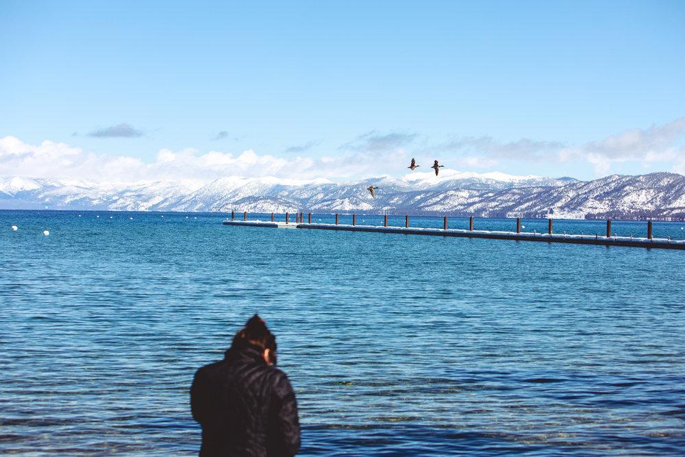 Jason Hendardy_South Lake Tahoe.jpg