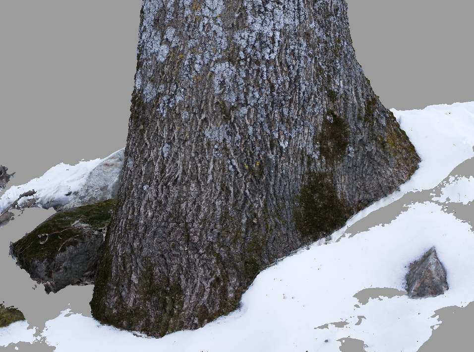 Attempts at   Photogrammetry -