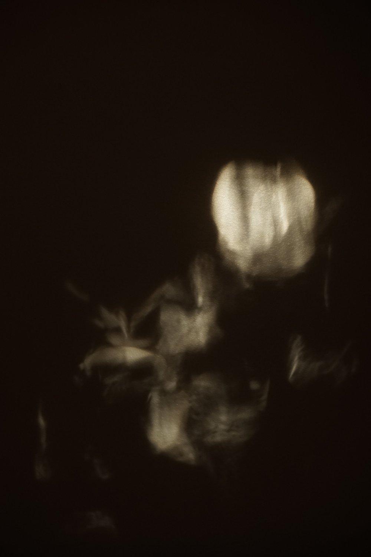 Fleur de lumière, 2015