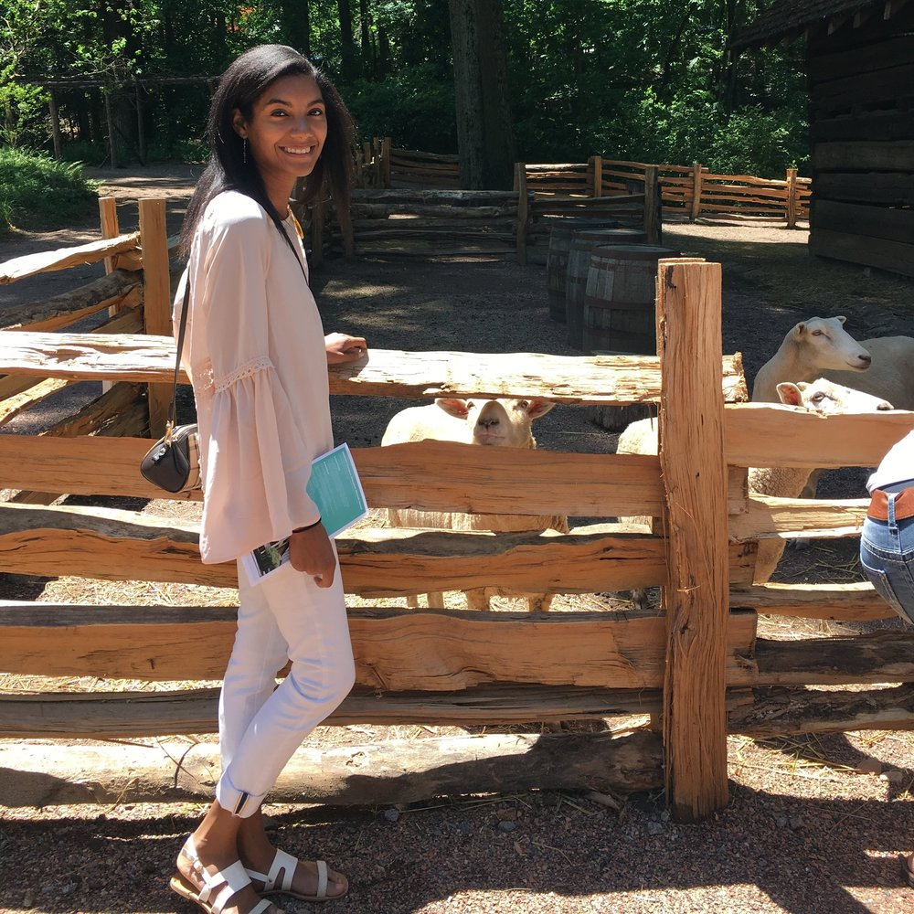 Feeding and petting the sheep, and goats at the Smith Family farm was so much fun.