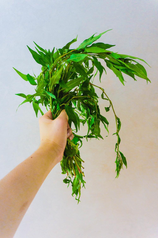 Kesom leaves
