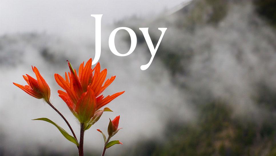 joy-banner-mobile.jpg
