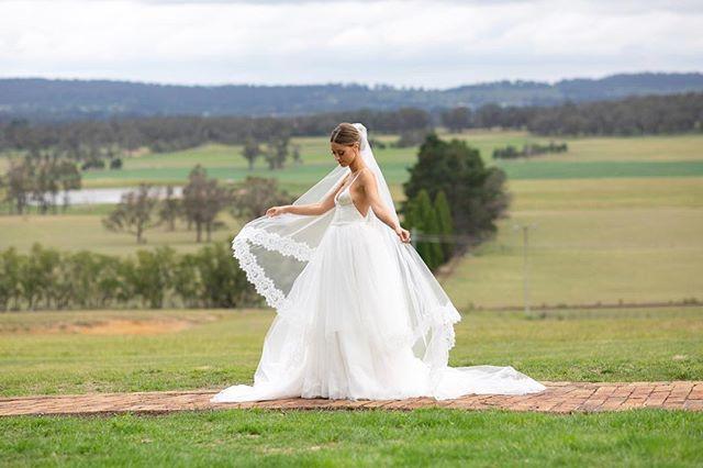 In absolute love with this stunning dress by @velani . . . #sydneywedding #sydneyweddingphotographer #sydneybride #smpweddings #blumenthalphotography #weddingblogger #melbournewedding #melbournebride #melbourneweddingphotographer #modernbride #weddingwire #stylemepretty #huffpostido #bridestyle #ruffledblog #soloverly #thedailywedding #sydneyweddingphotography #theknot #Bridestyle #Theweddingbliss #Brides_selection #modernweddingmagazine #Weddinggowns #destinationwedding #bridestory #weddingstyle #luxurywedding