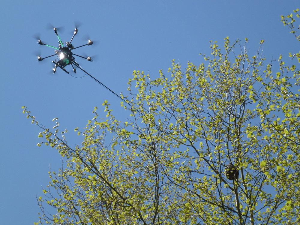 Operación de tratamiento con drone. 22 metros de altura. 1 operador.