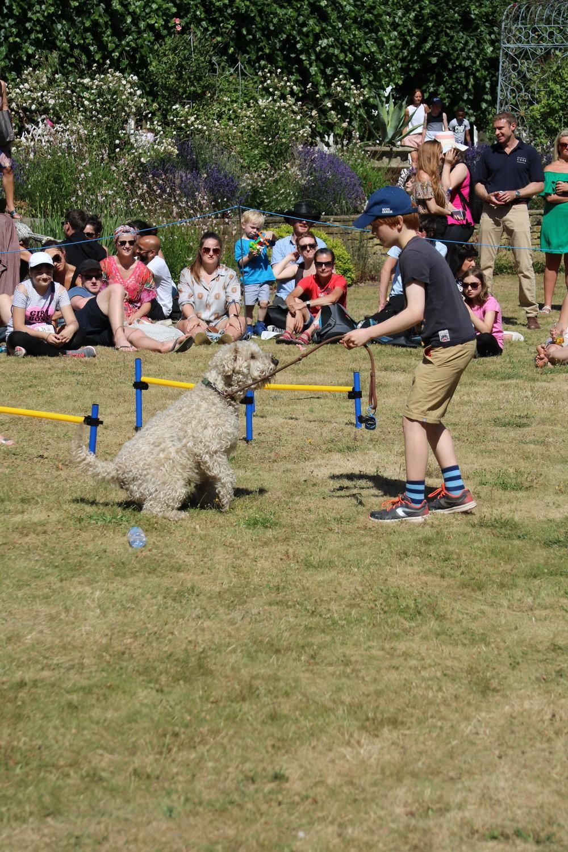 Dog show 0.JPG