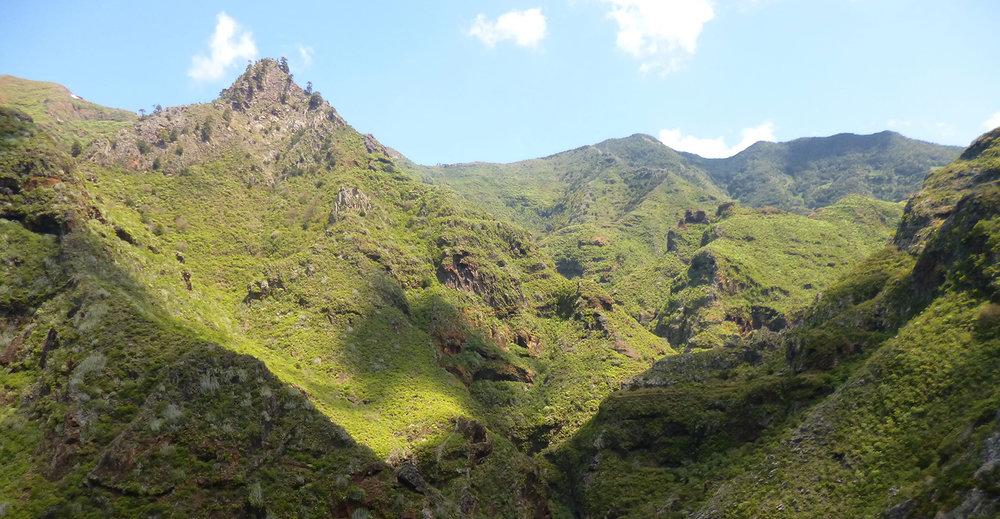 Ceremonias en TenerifeEspaña