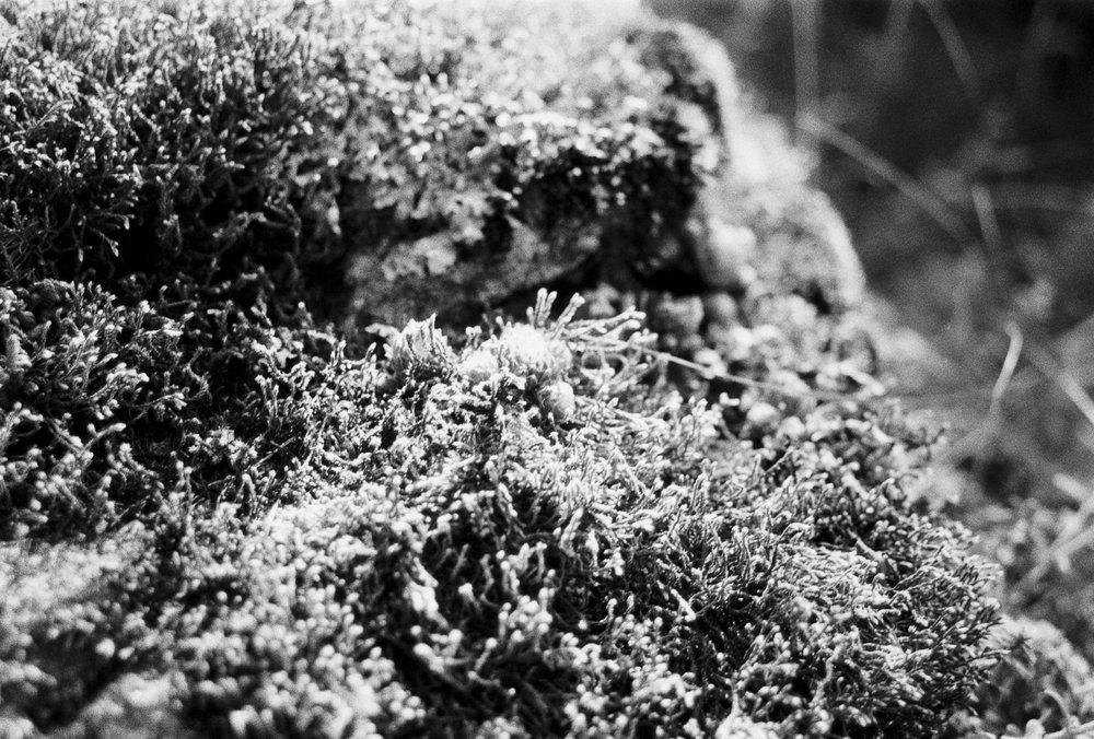 Tirol_XeniaBluhm-21.jpg