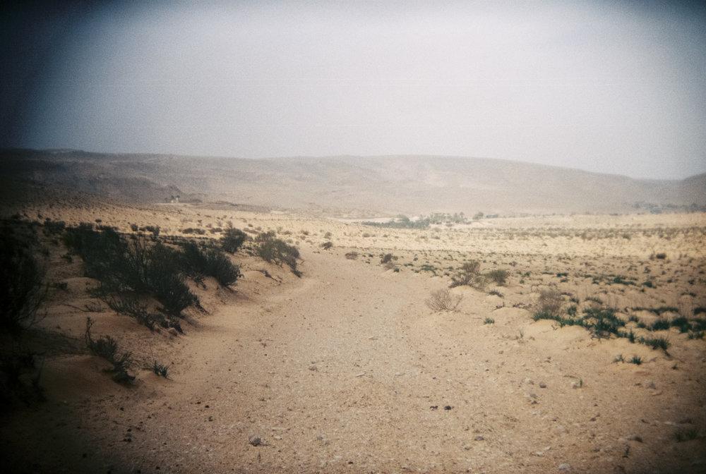 israel-xeniabluhm-23.jpg