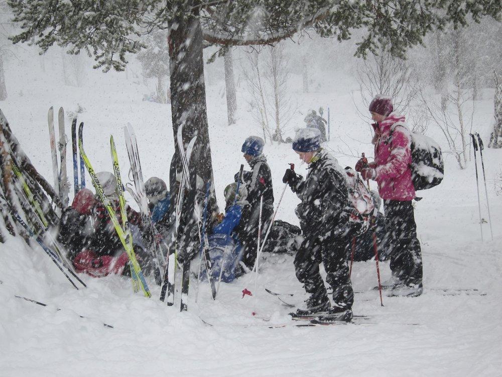 Bli kjent i terrenget - Vi vil gjerne at elevene blir kjent med skiene og i terrenget i starten av fjellskoleoppholdet. Vi pleier derfor gjerne å starte andre dag på Dombås Ski- og skiskytterarena,- der det er fine aktivitets- og leikemuligheter. Etter lunsj ute går vi en fin rundtur i fjellbjørkeskogen, som inneholder moderate og morsomme utfordringer i rolig progresjon.Det viser seg at de fleste elevene synes dette er en fin måte å starte på, og vi satser på en koselig og morsom skidag, der både instruksjon og leik er smeltet sammen. Vi tar pause med bål og kos,- og en leikesekvens med yrende jubel pleier også å høre med. Tilbaketuren til Fjellskolen går i oppkjørte løyper, og ender på Dombås Skistadion, som har vært arena for mange mesterskap. Varighet: ca 5 timer