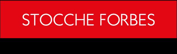 <b>Acordo de acionistas e principais questões societárias</b></br>Stocche Forbes
