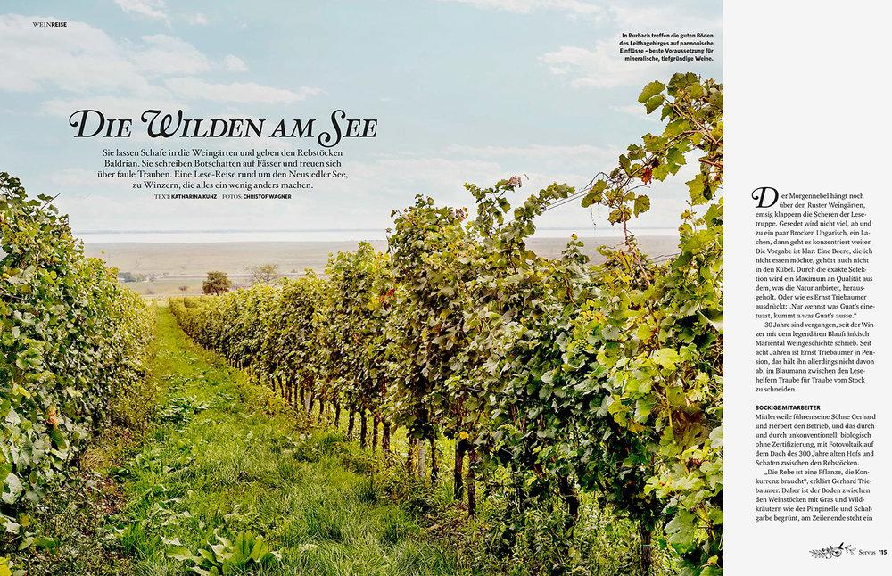"""""""Die Wilden am See"""" / kulinarische Reise um den Neusiedlersee für GUTE KÜCHE"""