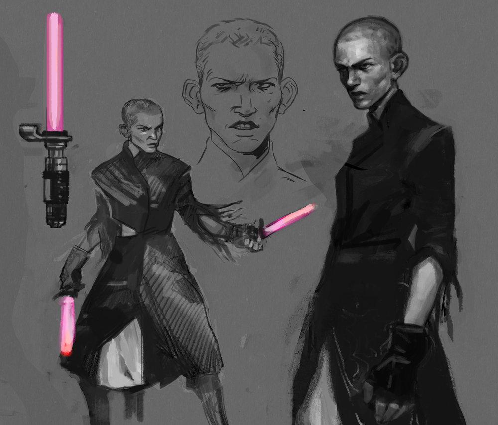 Dual wielding Star Wars fan character, 2017.