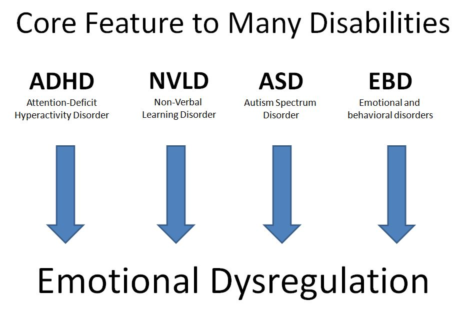 Emotional Regulation For Kids With Adhd >> The Kids Teach Emotional Regulation