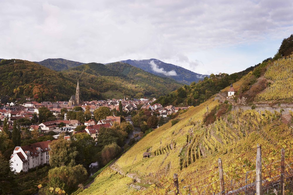 2017_10_09_ATLAS_OF_TASTE_FRANCE_ALSACE_65917.jpg