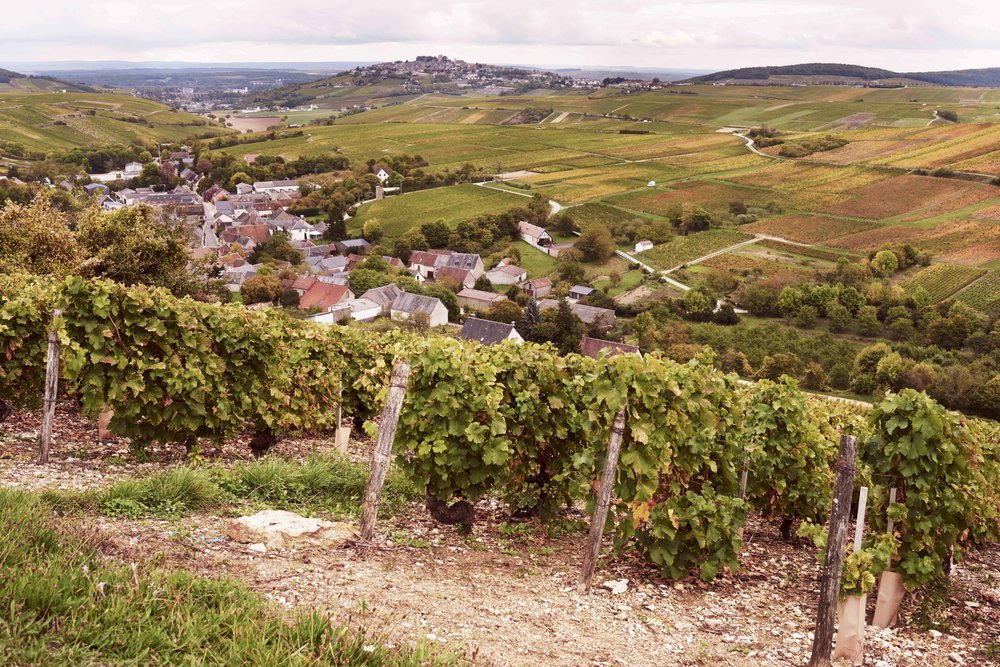 2017_10_10_ATLAS_OF_TASTE_FRANCE_SANCERRE_66694.jpg