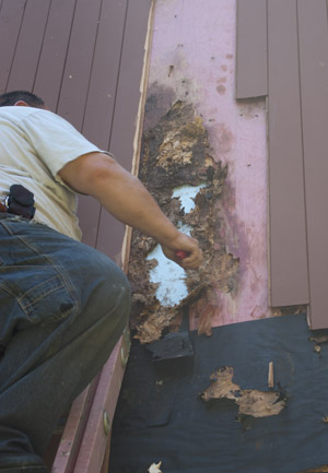 Investigators found that decades of moisture infiltration had led to spreading deterioration.