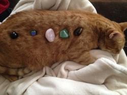 cat crystals.jpg