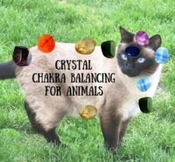 crystal559.jpg