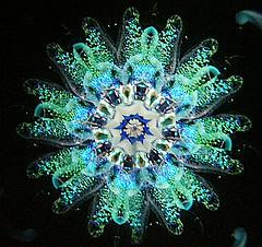 crystal304.jpg