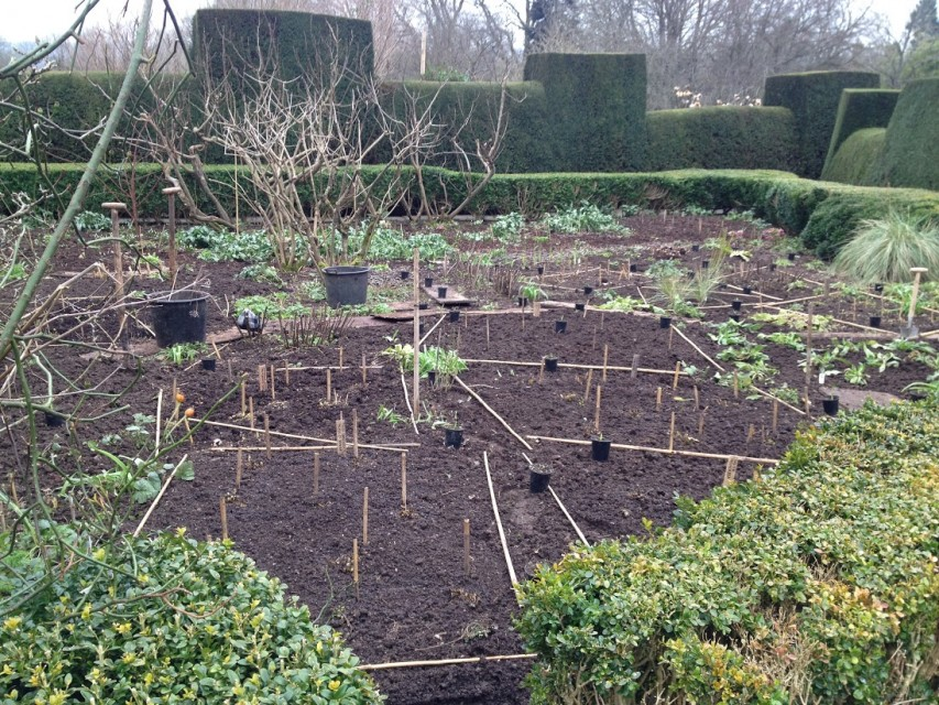 'after' - the bare bones of the orchard garden, everything labelled and marked