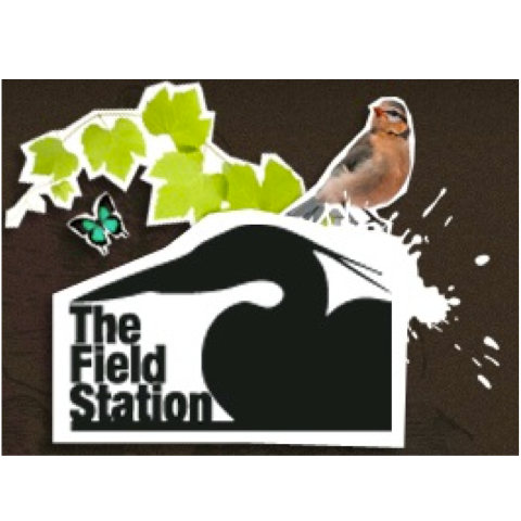 Field Station Cooperative   - 399 Howe RoadPorter, IN 46304219-926-2500director@fieldstationkids.org
