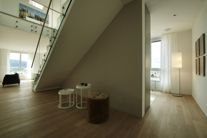 152_iria_degen_interiors_loft_zurich3.jpg