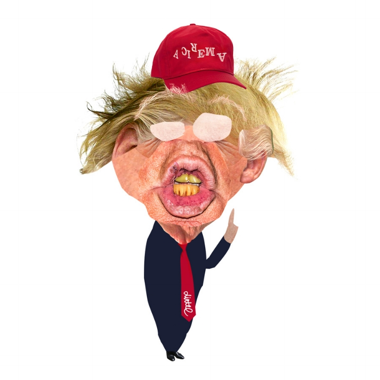 DONALD DRUMPF ARTWORK BY DOM DIRTEE