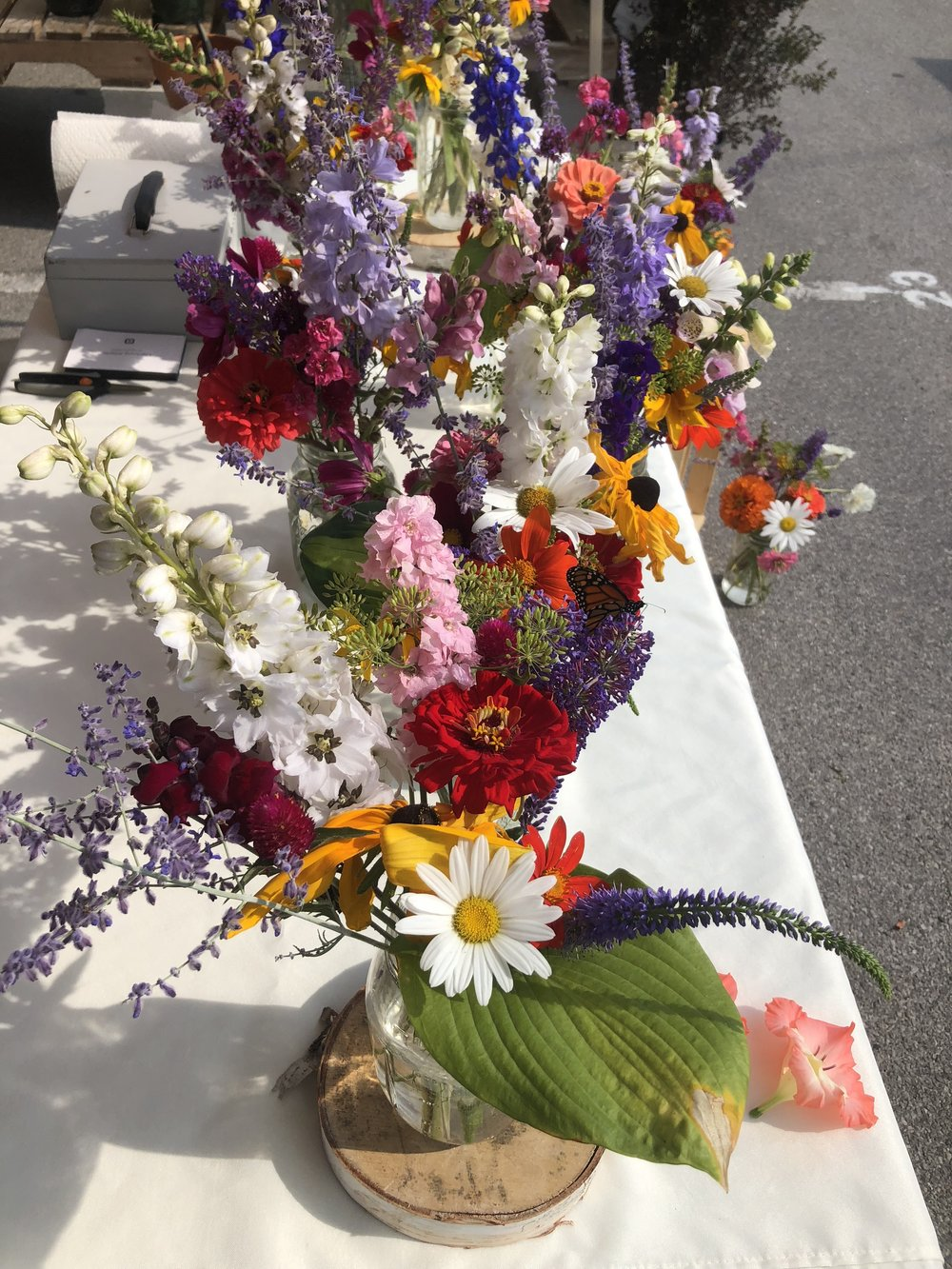 8/23/18 at the Farmer's Market in Northport