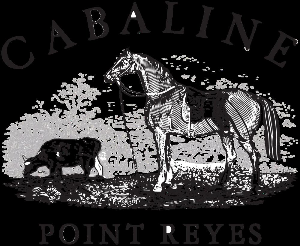 9dbeb0561976 Born Sandals Women Canna in Brown — Cabaline