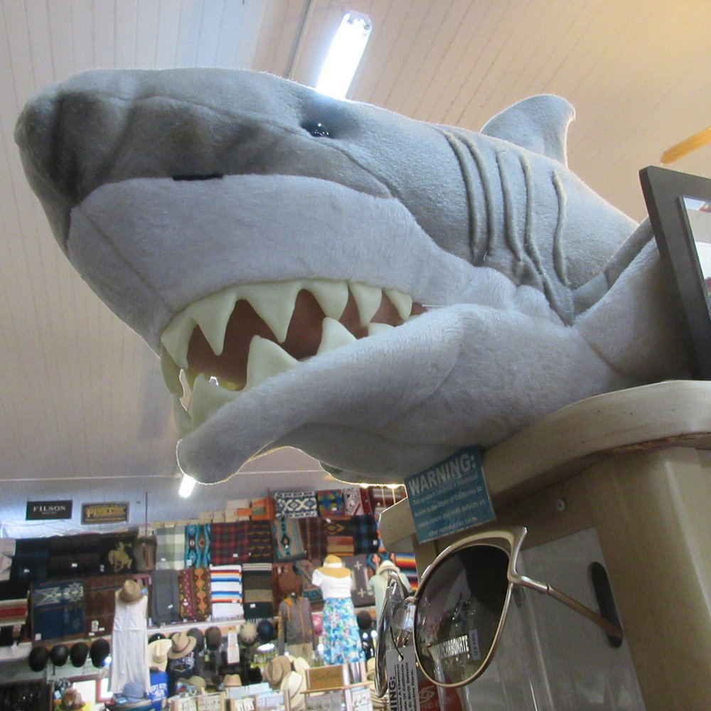 Great White Shark Puppet from The Puppet Company