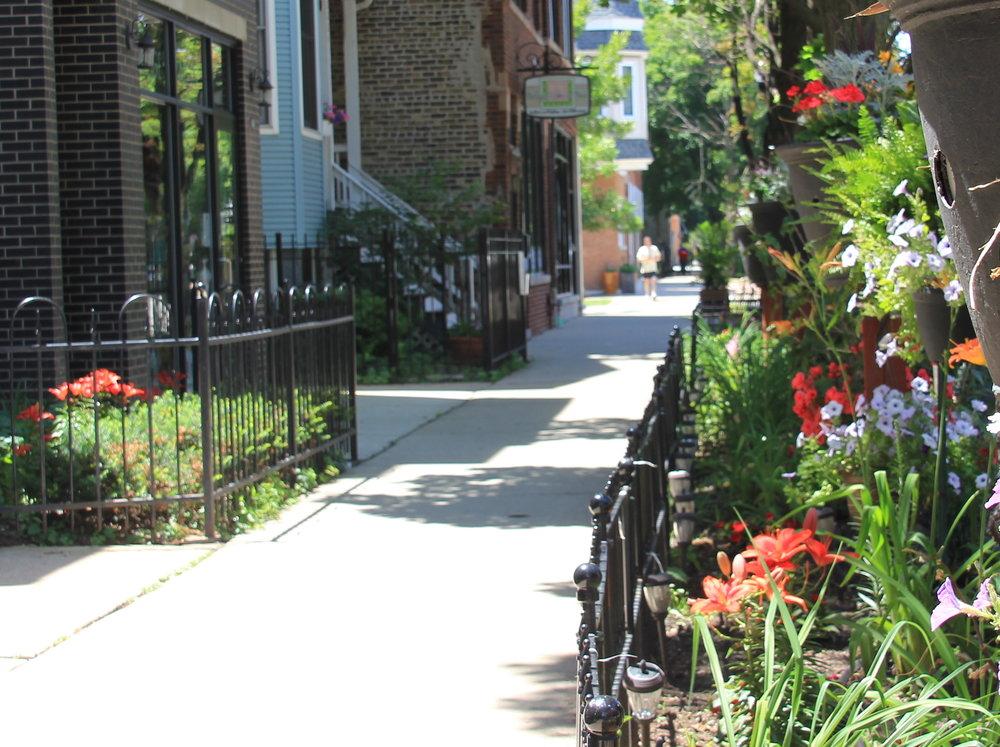 Down the street.JPG