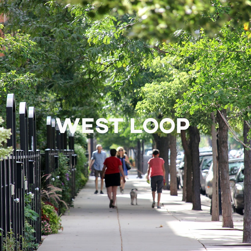 West Loop Cover.jpg