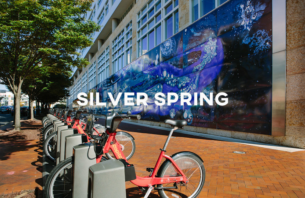 Silver Spring - Great city amenities and just outside of DC