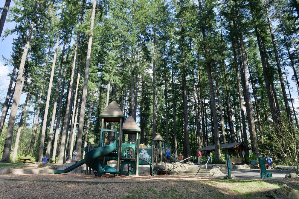 Pine Lake 4.jpg