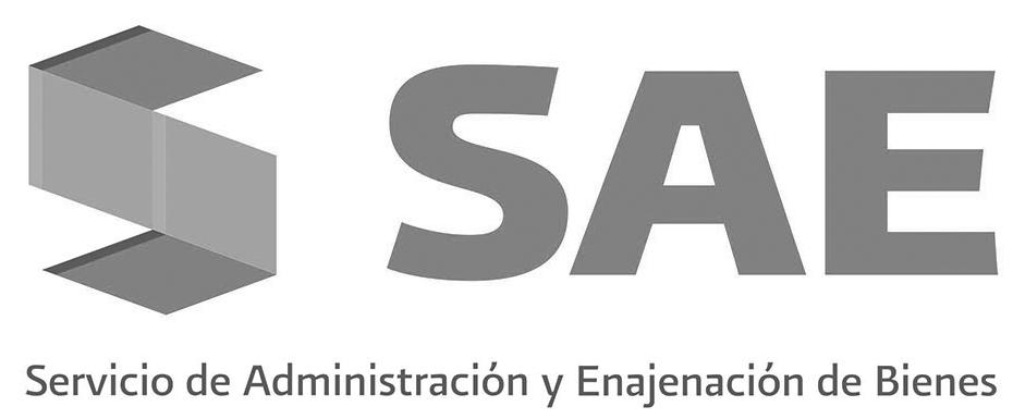 SAE-gobierno.jpg