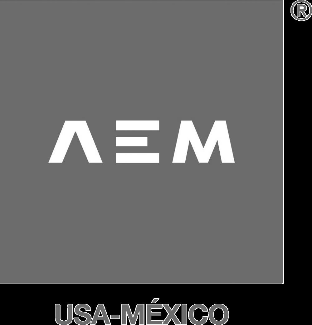 logo AEM USA-MEXICO gray.png
