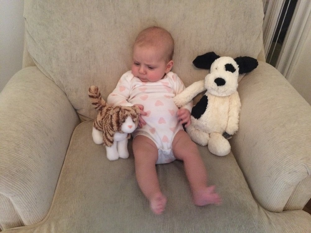 Everyone is born loving animals, including our Because Animals CFO's daughter, Edie.