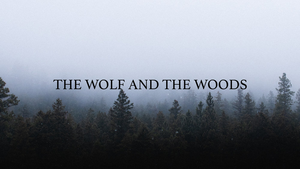 The Wolf and the Woods (2019)
