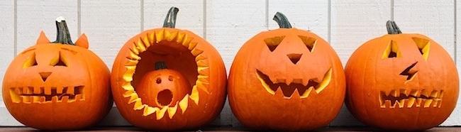 Stock-HalloweenPumpkins-t20_knkgvE.jpg