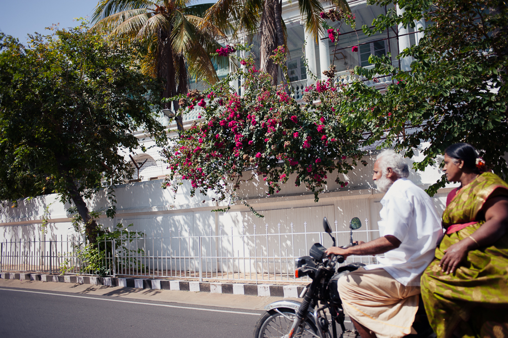 Pondicherry is a French colony, and is full of white architecture and fuschia blooms.