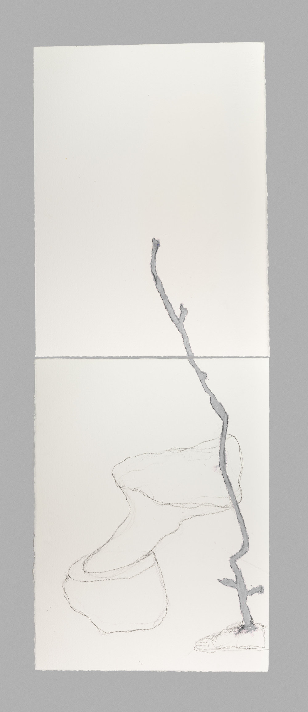 Finding Form #14   Pencil and cray-pas on paper  15 x 44  2018