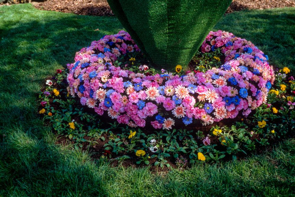 Garden_slide_scan-22.jpg
