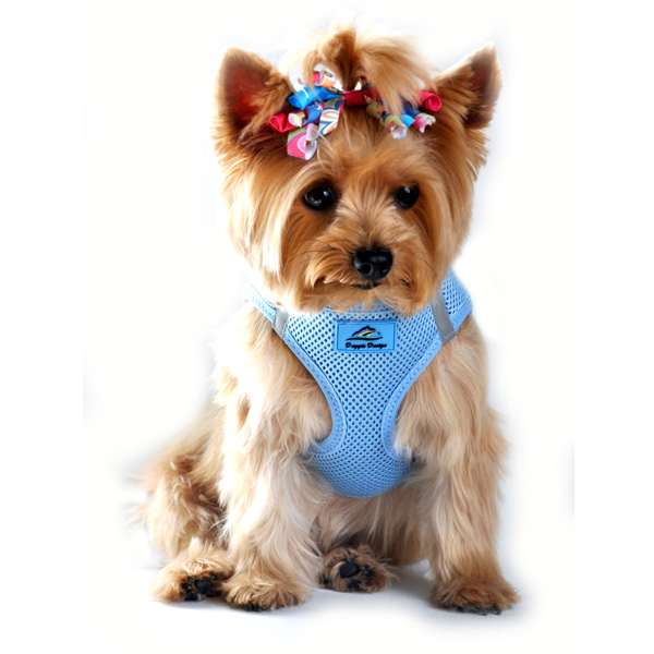 american-river-choke-free-mesh-dog-harness-light-blue-1.jpg