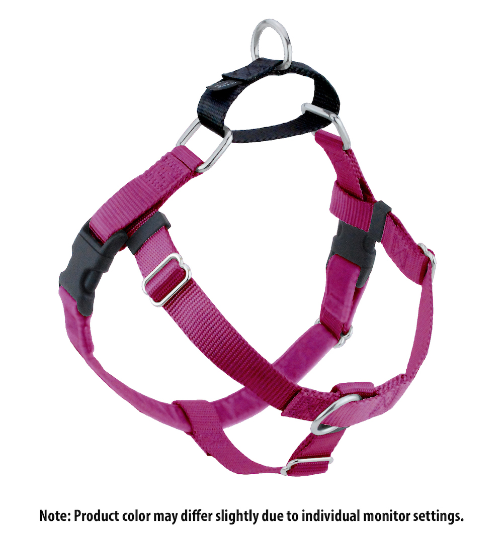 Raspberry with black Freedom no pull harness.jpg