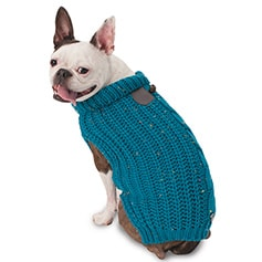 Dog Clothes in Bergen County