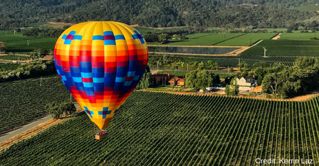 Inspire Napa Valley, benefiting the Alzheimer's Association, will raise critical funds to help families in Northern California struggling with Alzheimer's care and fund cutting-edge research nationwide. Learn more about Inspire Napa Valley