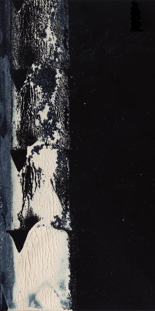 Cosmos Tide Neaps #14