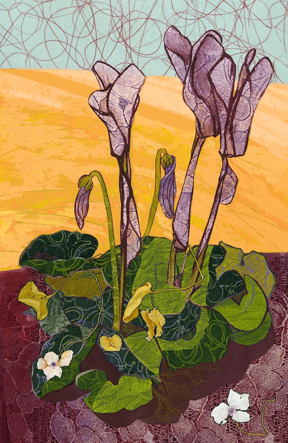 Cyclamen Plant I