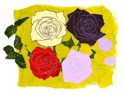 Roses+22+X+29+inches.png