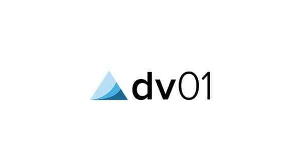 dv01_rect.jpg